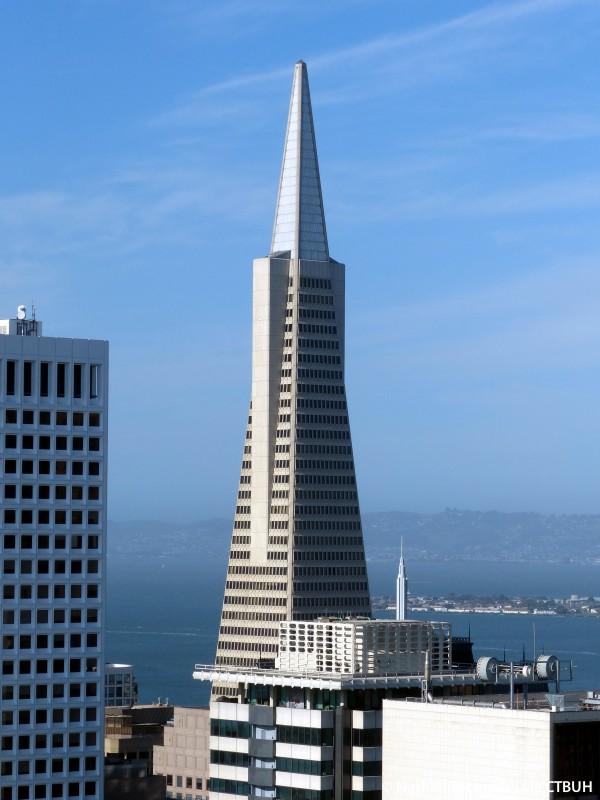 Transamerica Pyramid San Francisco High Rise Building
